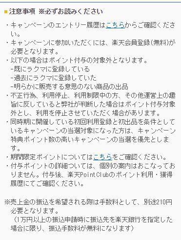 rakuma4.JPG